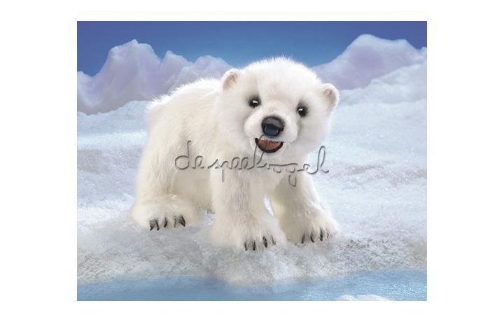 3041 Polar beer