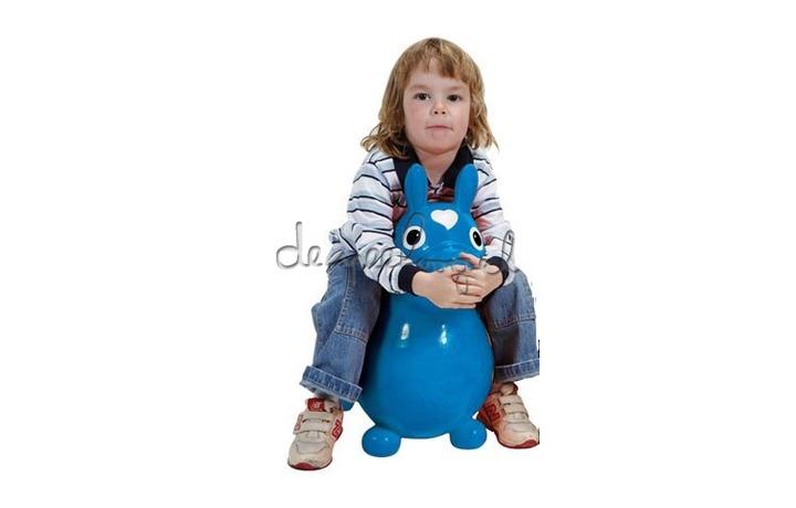 Cavallo Rody blauw