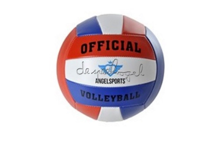 724009 Volleybal, official size