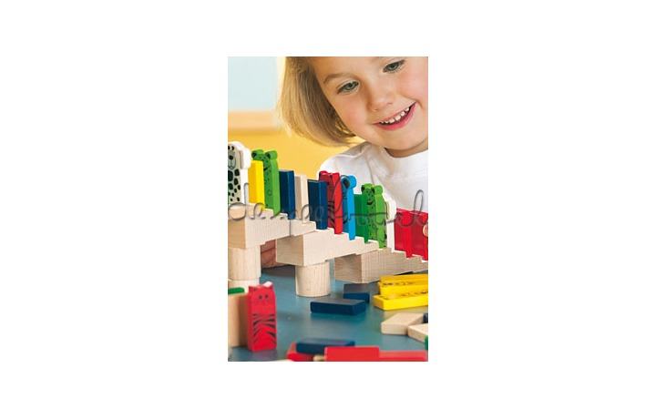 1172 domino race