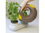 quut_cana_inuse_kitchen-02-crop-u45623.jpg