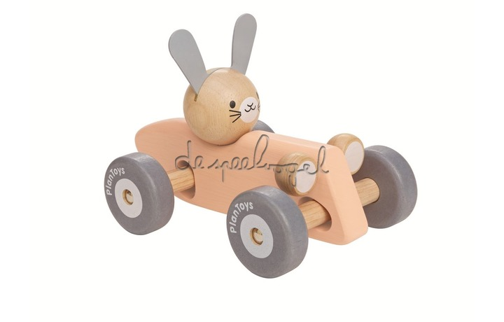 5717 PlanLifestyle - Bunny Racing Car