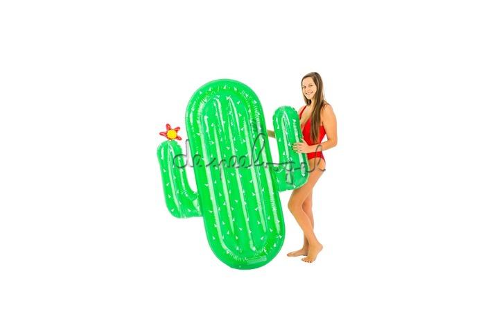 15504537 Luxe Cactus