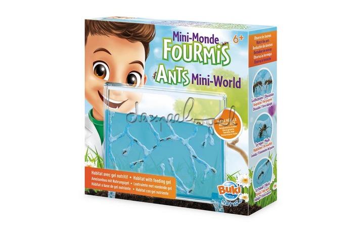 FS4206 Antiquarium, kleine wereld van mieren