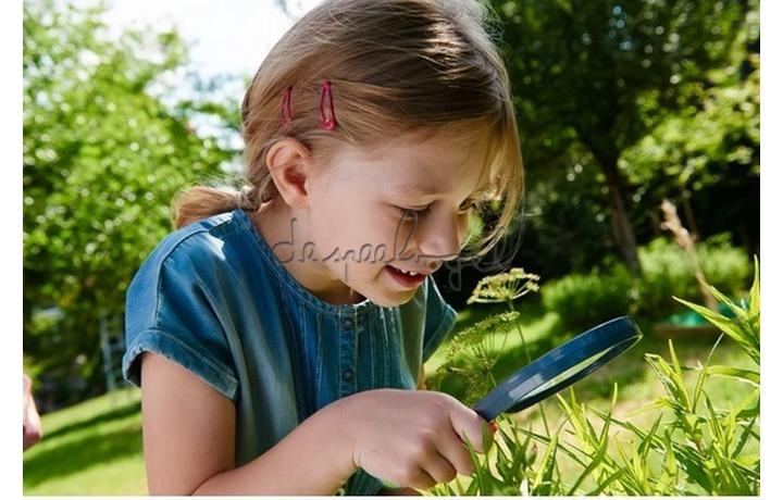 303529 Terra Kids - Kinderloep