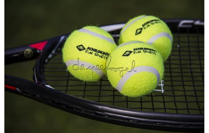 970048 Tennisballen 3 st in netje