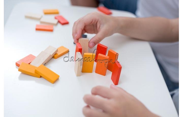 4135 PlanMini - Domino