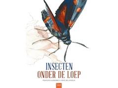 insectenonderdeloep.jpg