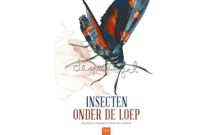 Insecten Onder De Loep /Lasserre