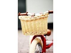 Trybike-rietenMand.jpg