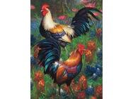 80217-roosters.jpg
