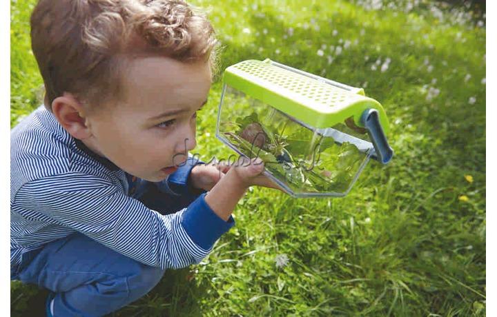 301513 Terra Kids - Insectendoos