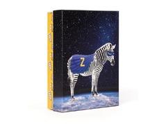 SetBoysSuperheroes-Zebra-503.jpg