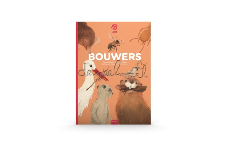Bouwers / Ollivier