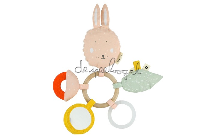 24541 Activity Ring - Mrs. Rabbit