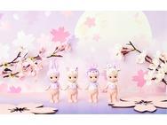 CherryBlossom1.jpg