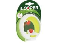 loop001_1.jpg